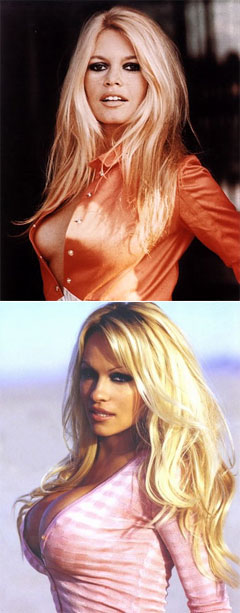 Brigitte Bardot vs. Pam Anderson is like sewn collars vs. fused collars
