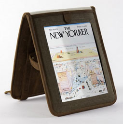 Ask the MB: iPad Case