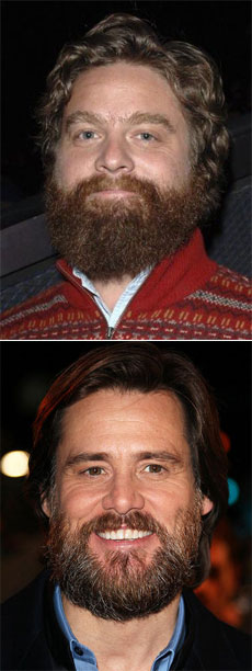 Is Zach Galifianakis Hollywood's New Tastemaker?